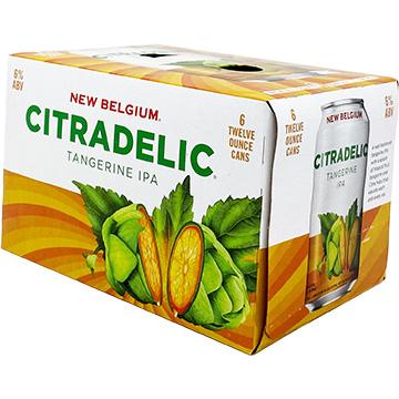 New Belgium Citradelic Tangerine IPA